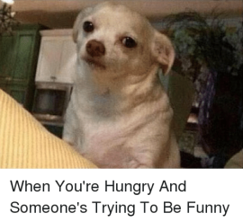 when-youre-hungry-and-someones-trying-to-be-funny-3050272